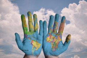 Empresas y distribuidores de materiales ecologicos