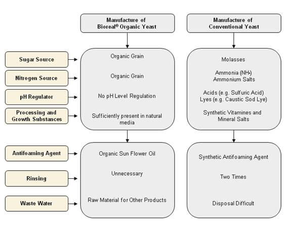 Esquema del proceso de producción de levadura orgánica de panadería