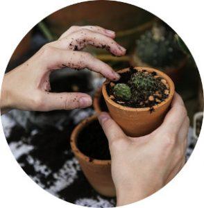 Maceta con para cultivo de agricultura ecológica