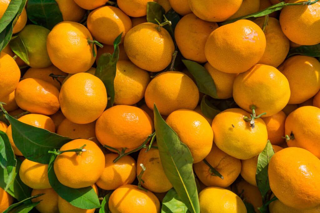 clementinas