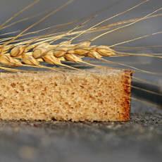 Grano trigo y pan de harina ecológica
