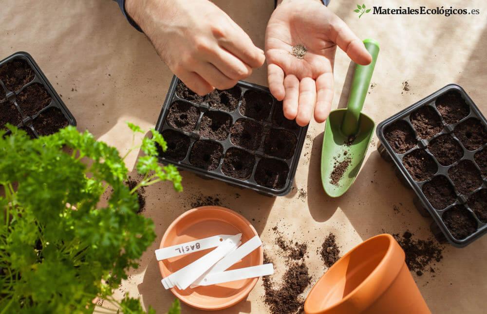 semillero, plántulas y semillas ecológicas