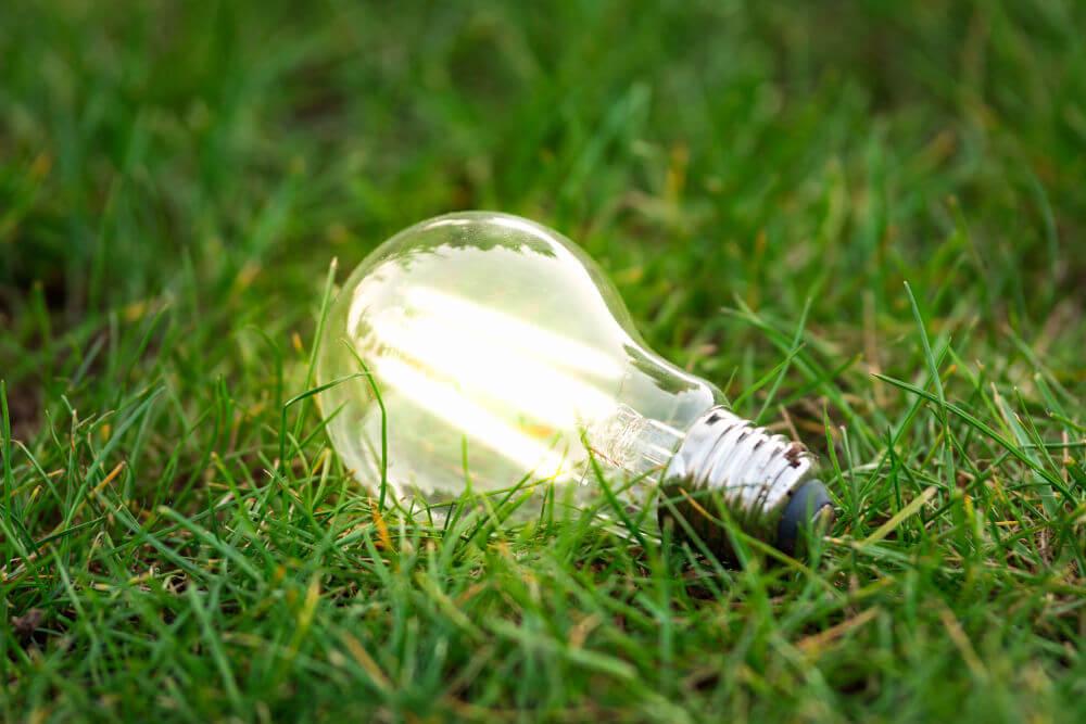 electricidad en bombilla sobre hierba verde