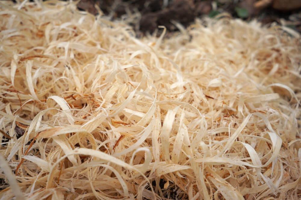 viruta de madera para rellenar embalajes